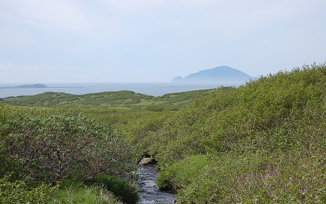Izembek by USFWS