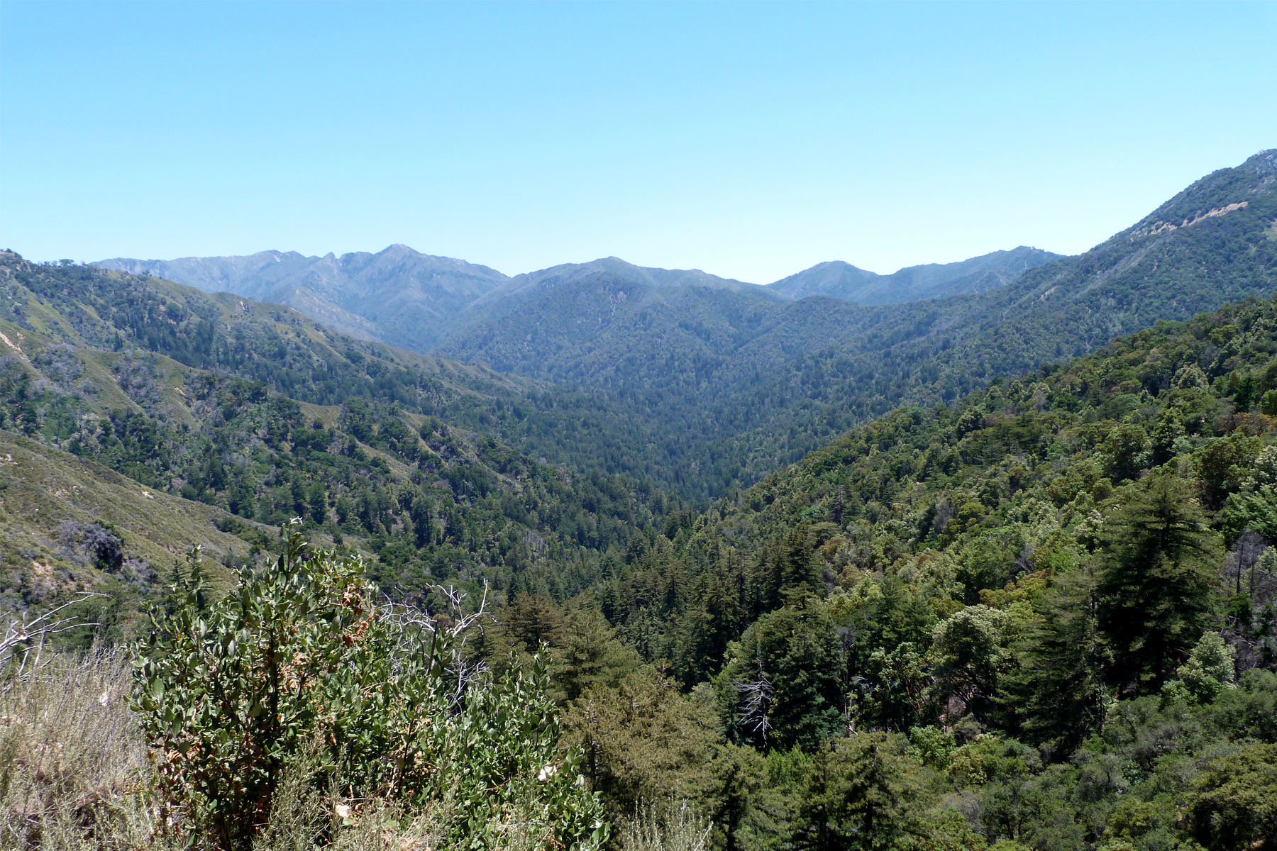 Ventana Wilderness